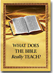 Cover of What does the Bible Really Teach?